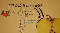 Vídeo del concurs Aquí hi ha Química sobre els aditius alimentaris